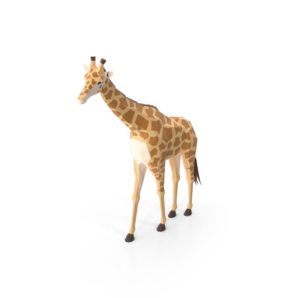 Giraffe PNG & PSD Images