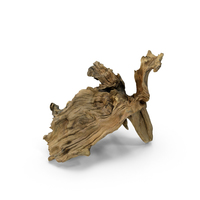 Driftwood PNG & PSD Images