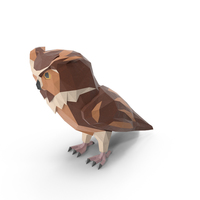 Owl PNG & PSD Images