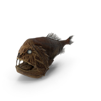 Fangtooth Fish PNG & PSD Images