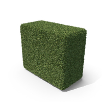Topiary  Hedge PNG & PSD Images