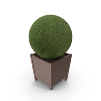 Topiary Sphere PNG & PSD Images