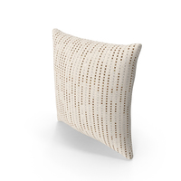 Contemorary Throw Pillows PNG & PSD Images