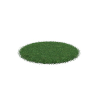 Grass Patch PNG & PSD Images