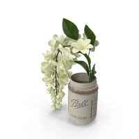 Mason Jar with Flowers PNG & PSD Images