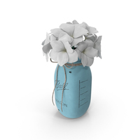 Contemporary Flower Vase PNG & PSD Images