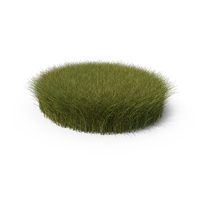 Tall Grass Patch PNG & PSD Images