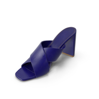 Womens Shoe PNG & PSD Images