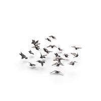 Flocking Birds Pigeons Flying PNG & PSD Images