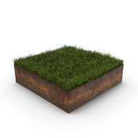 Grass Cross Section PNG & PSD Images