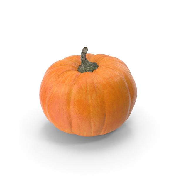 Pumpkin Patch PNG & PSD Images