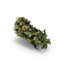 Cannabis PNG & PSD Images