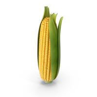 Ears of Corn PNG & PSD Images