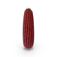 Ear of Corn PNG & PSD Images