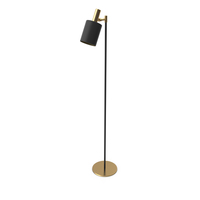 Capital Collection Loft Style Musa Lamp PNG & PSD Images