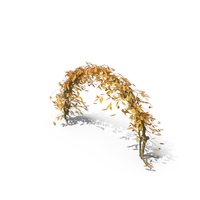 Autumn Ivy Arch PNG & PSD Images