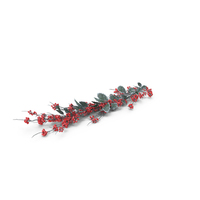 Frosted Holly Twig PNG & PSD Images