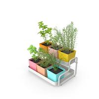 Indoor Herb Garden PNG & PSD Images