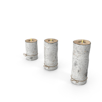 Birch Tree Candle Holders PNG & PSD Images
