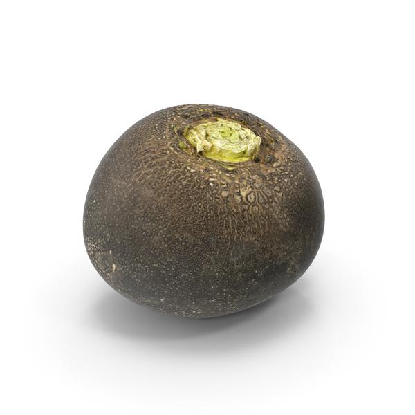 Black Turnip PNG & PSD Images