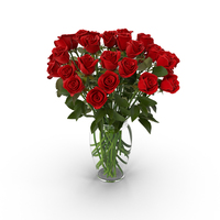 Red Rose Bouquet in Vase PNG & PSD Images