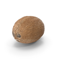 Coconut PNG & PSD Images