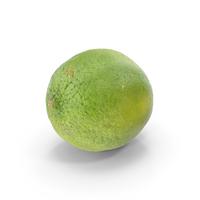 Kaffir Lime PNG & PSD Images