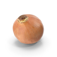 Onion Yellow PNG & PSD Images