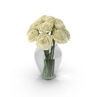 White Roses PNG & PSD Images