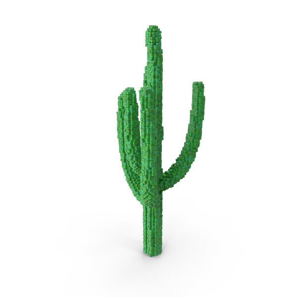 Voxel Cactus PNG & PSD Images