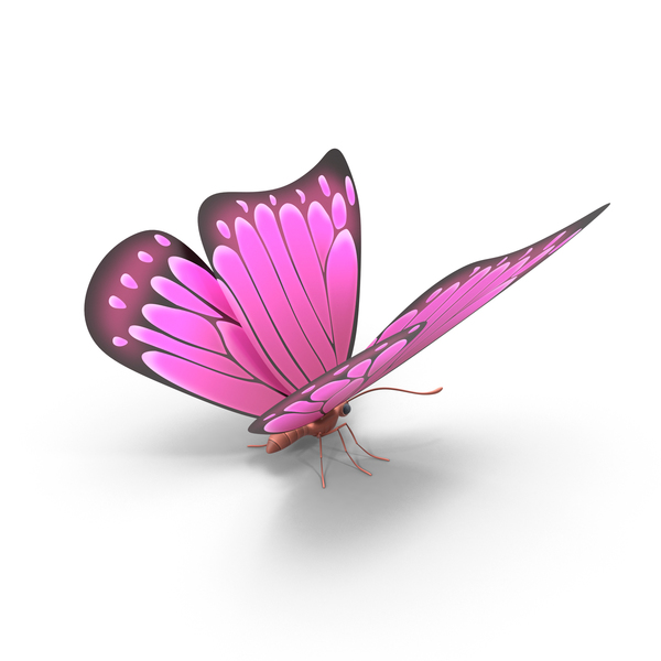 Pink Butterfly PNG & PSD Images
