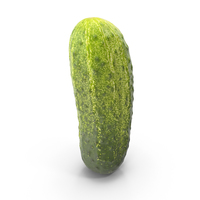 Gherkin Cucumber PNG & PSD Images