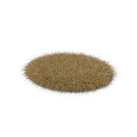 Dead Grass Patch PNG & PSD Images