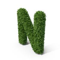 Hedge Shaped Letter N PNG & PSD Images