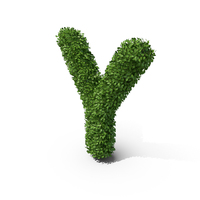 Hedge Shaped Letter Y PNG & PSD Images