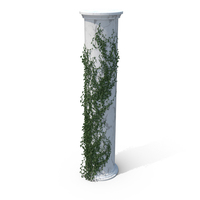 Growing Ivy PNG & PSD Images