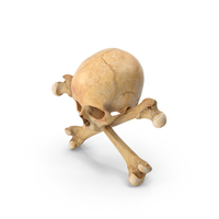 Pirate Skull and Bones PNG & PSD Images