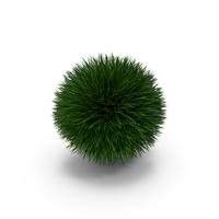 Grass Ball PNG & PSD Images