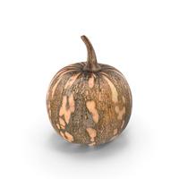 Little Pumpkin PNG & PSD Images