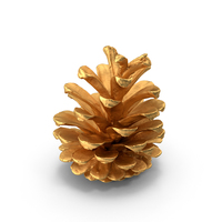 Pine Cone Gold PNG & PSD Images
