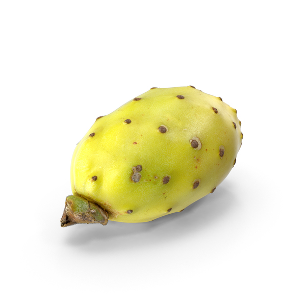 Cactus Fig PNG & PSD Images