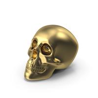 Golden Skull PNG & PSD Images