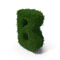 Boxwood B PNG & PSD Images