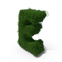 Boxwood Letter E PNG & PSD Images