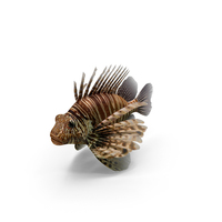 Lionfish PNG & PSD Images