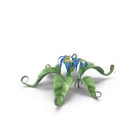 Cartoon Blue Flower PNG & PSD Images