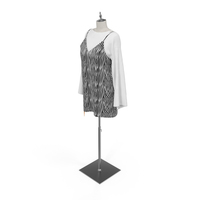 Dress on Mannequin PNG & PSD Images