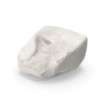 Cuneiform Bone Lateral White PNG & PSD Images