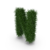 Grass Letter N PNG & PSD Images