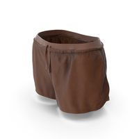 Women's Sport Shorts Brown PNG & PSD Images